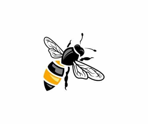 Varroafix - DIE NEUE Methode zur Varroabekämpfung!